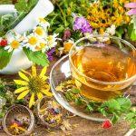 Мочегонные средства растительного происхождения