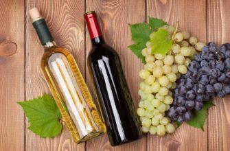 Лечение вином: польза вина, какие болезни лечит энотерапия