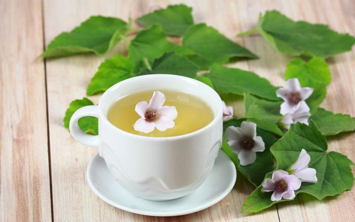 Чай из алтея