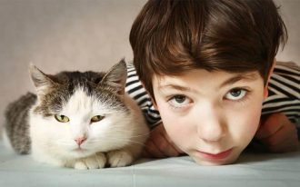 Микроспория: виды, лечение, стадии, осложнения и профилактика