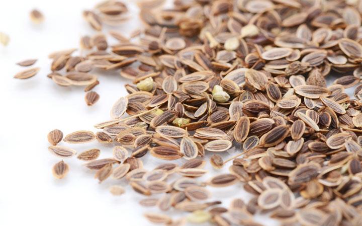 Семена укропа для улучшения зрения