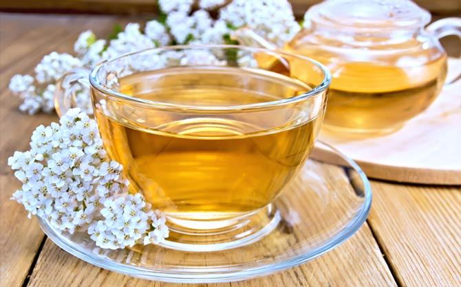 Целебный чай из тысячелистника